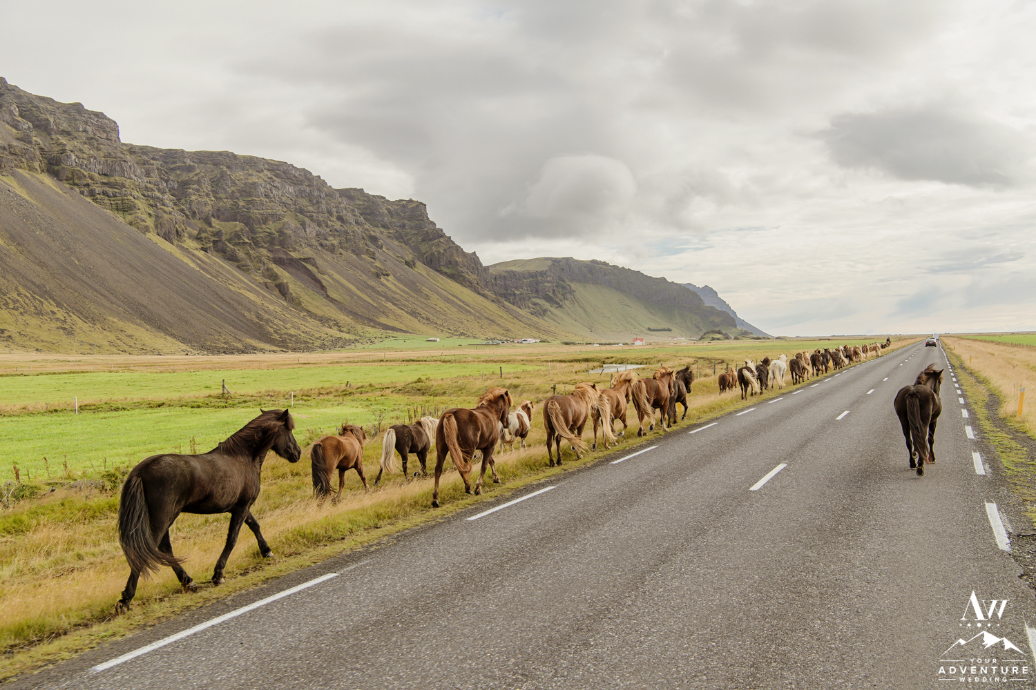 iceland-wedding-photos-22