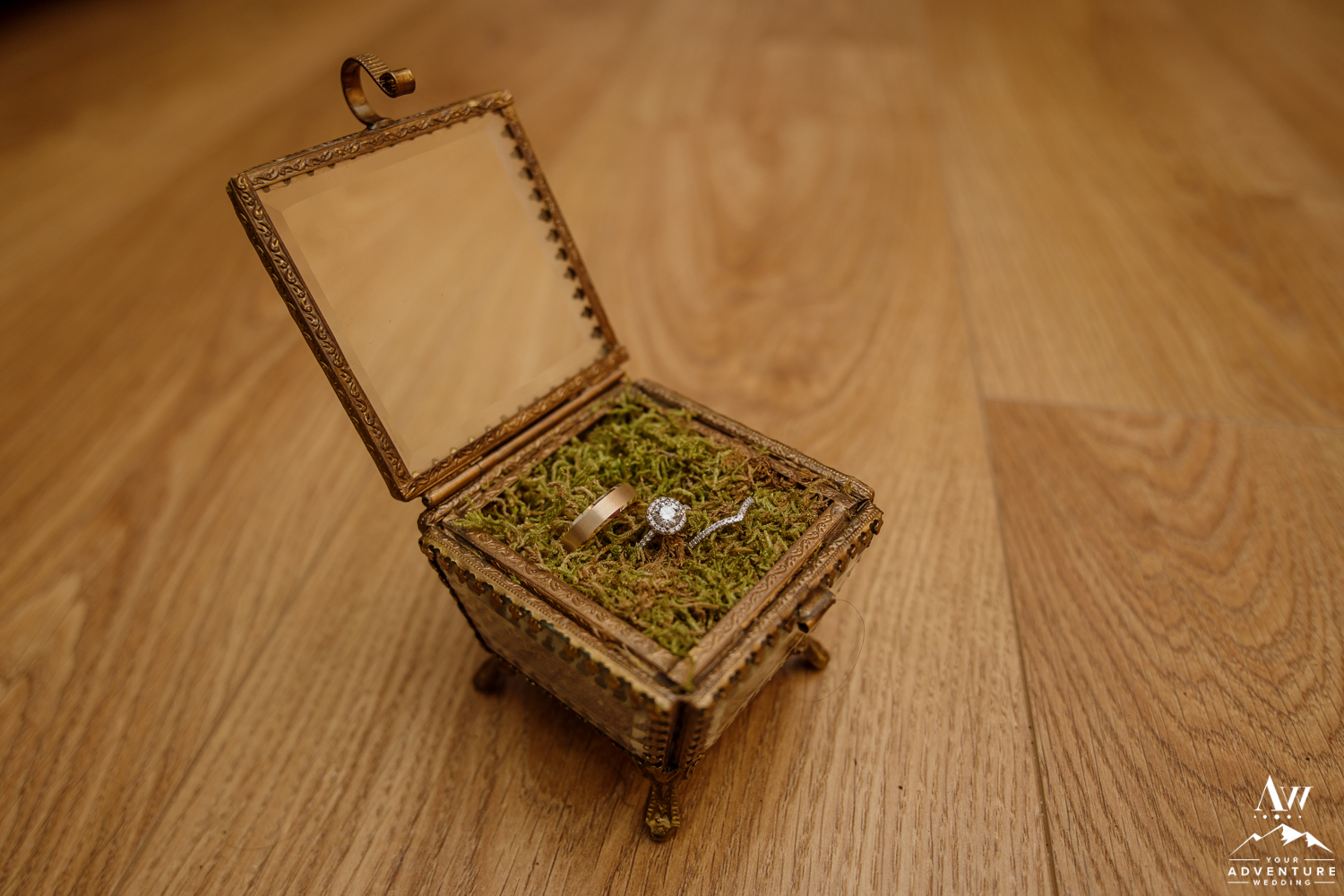 Iceland Wedding Rings in Antique Moss Box