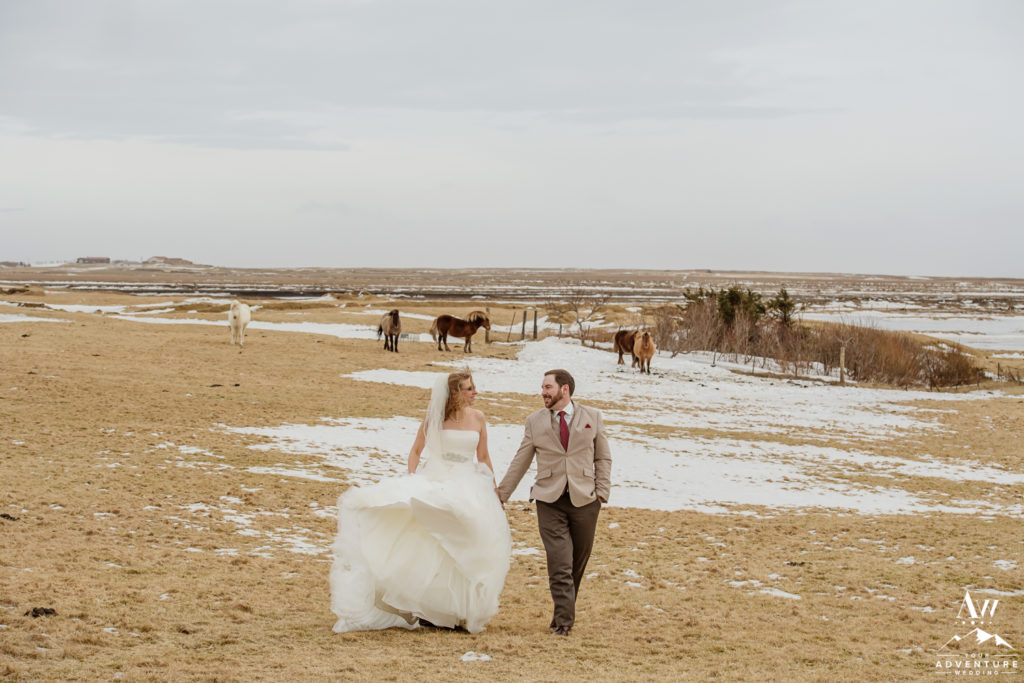 Iceland Wedding Couple Exploring Icelandic Horses