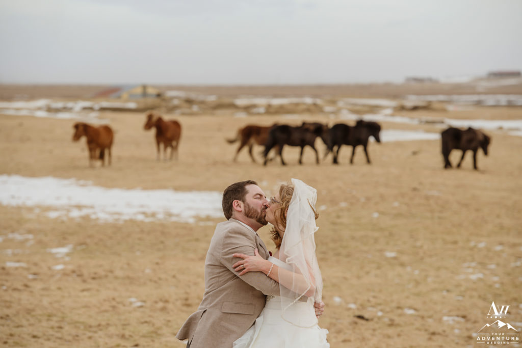 Couple kissing in front of Icelandic Horses
