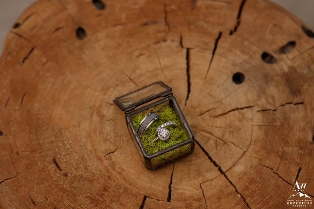 Iceland Wedding Rings in a glass box with moss