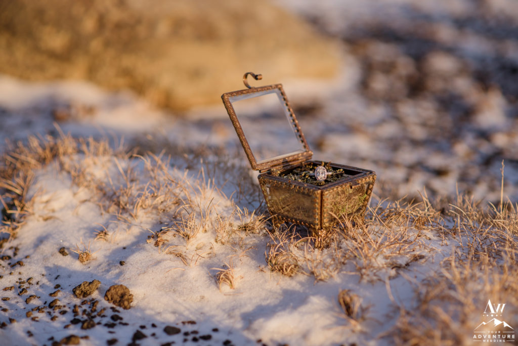 Iceland Engagement Ring in a moss box in snow
