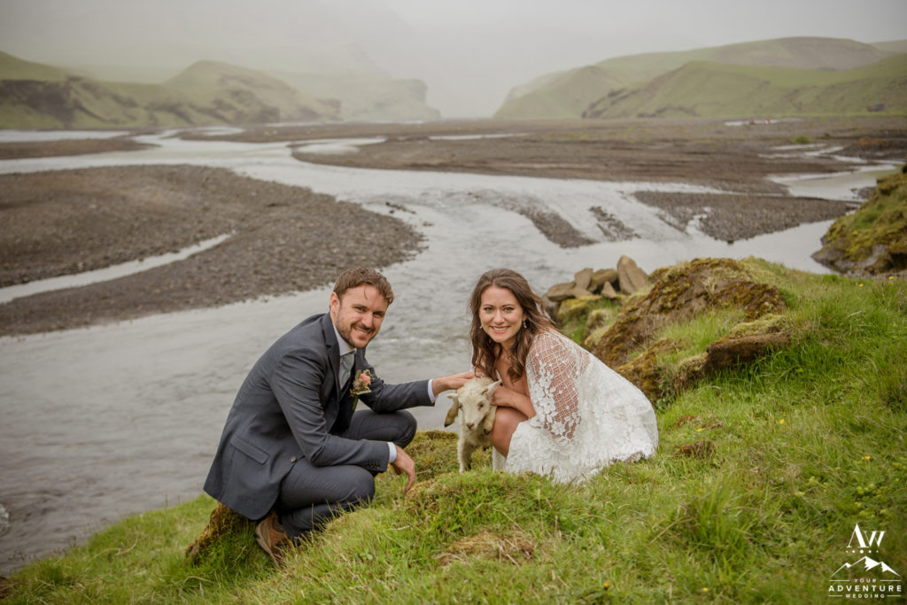 Bride and Groom Hugging a lamb on Iceland Adventure Wedding