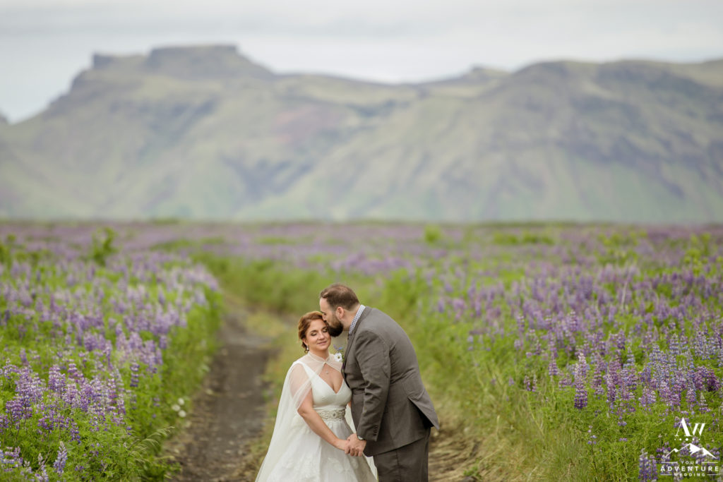 Couple kissing in Lupine field in Iceland