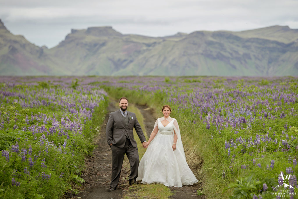 Iceland wedding couple standing in field of lupine in July