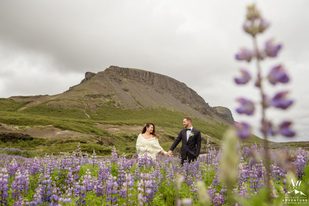 Iceland Wedding Couple in a field of Lupine during July wedding