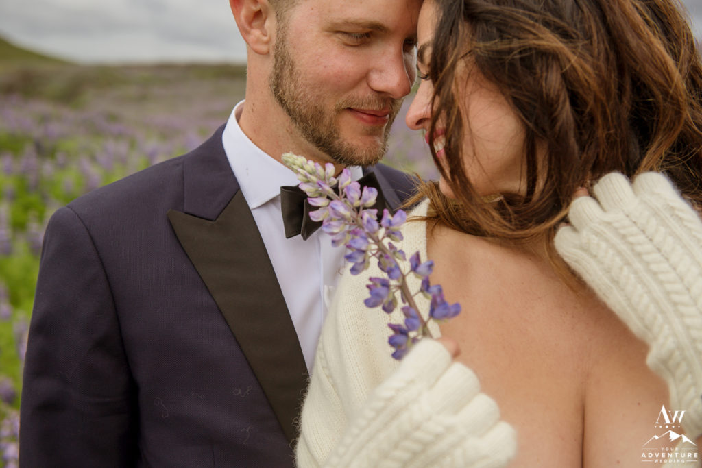 Iceland Wedding Couple in a field of lupine