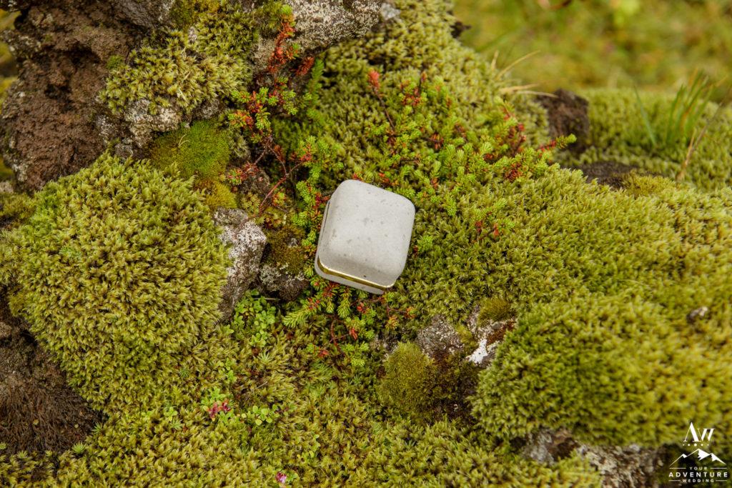 Iceland wedding ring box sitting on moss