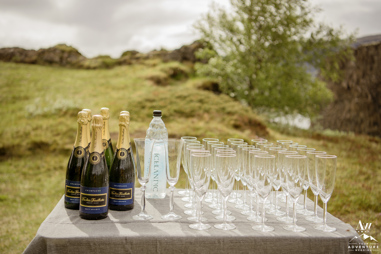 Iceland Wedding Champagne Toast