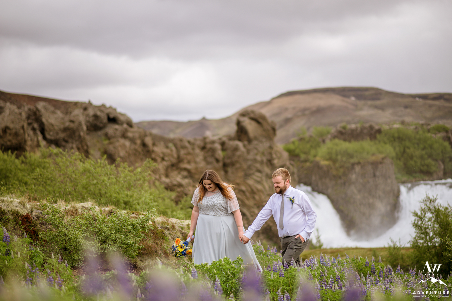 Iceland Wedding Couple walking through Lupine