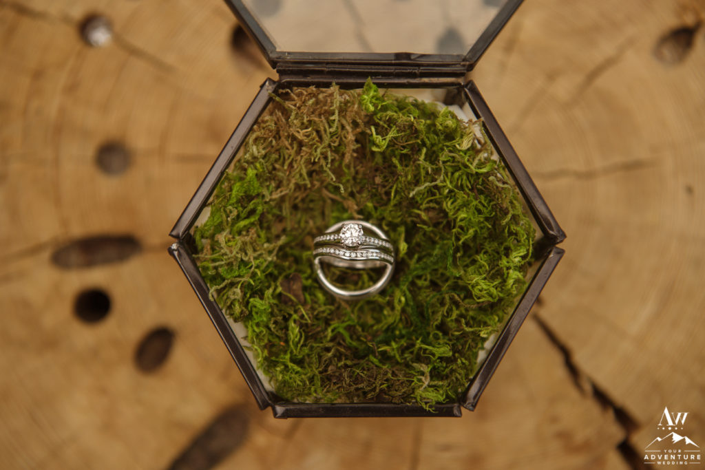 Iceland Wedding Rings in Moss