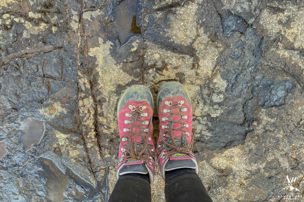 Iceland Hiking Boots