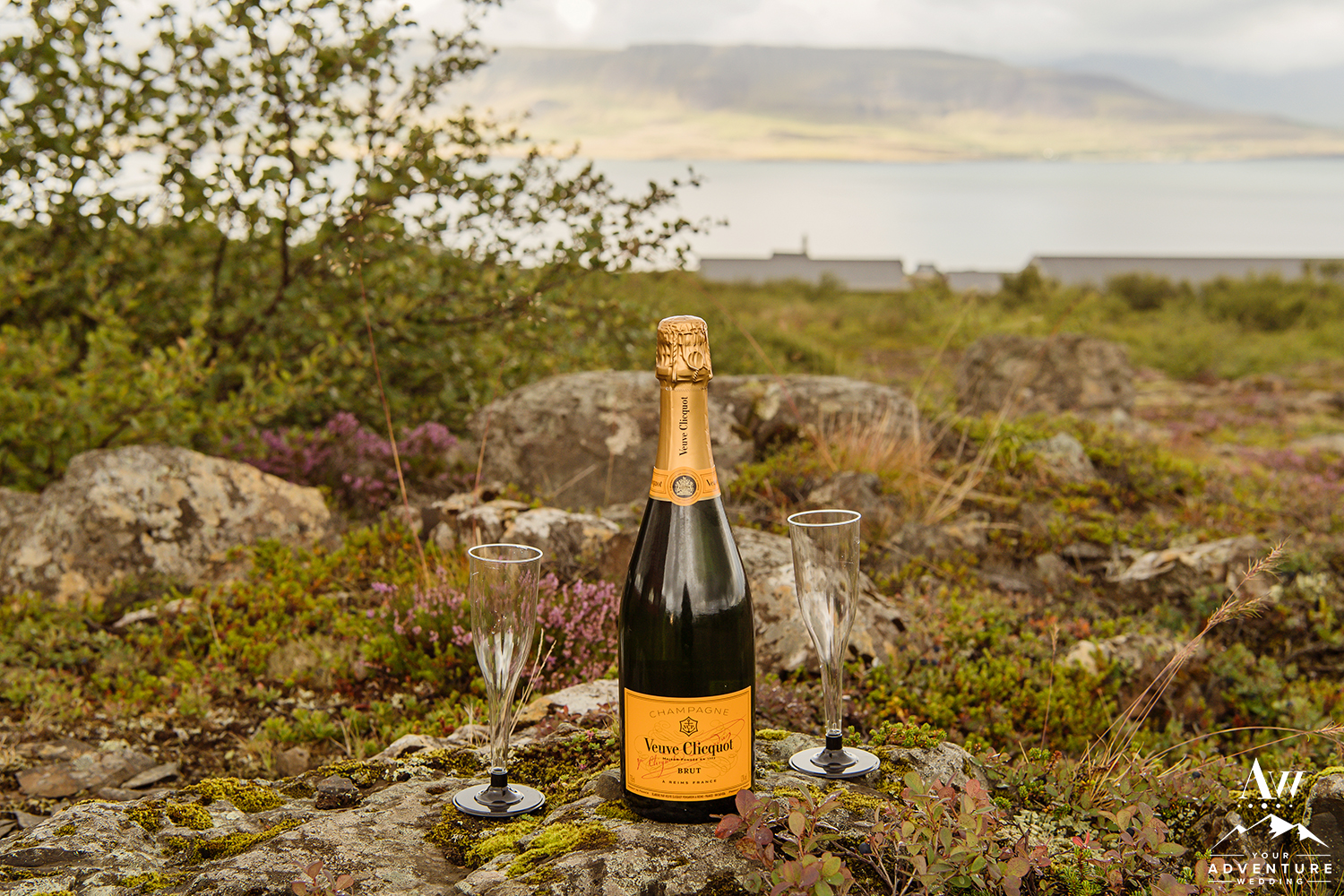 iceland-wedding-champagne-toast