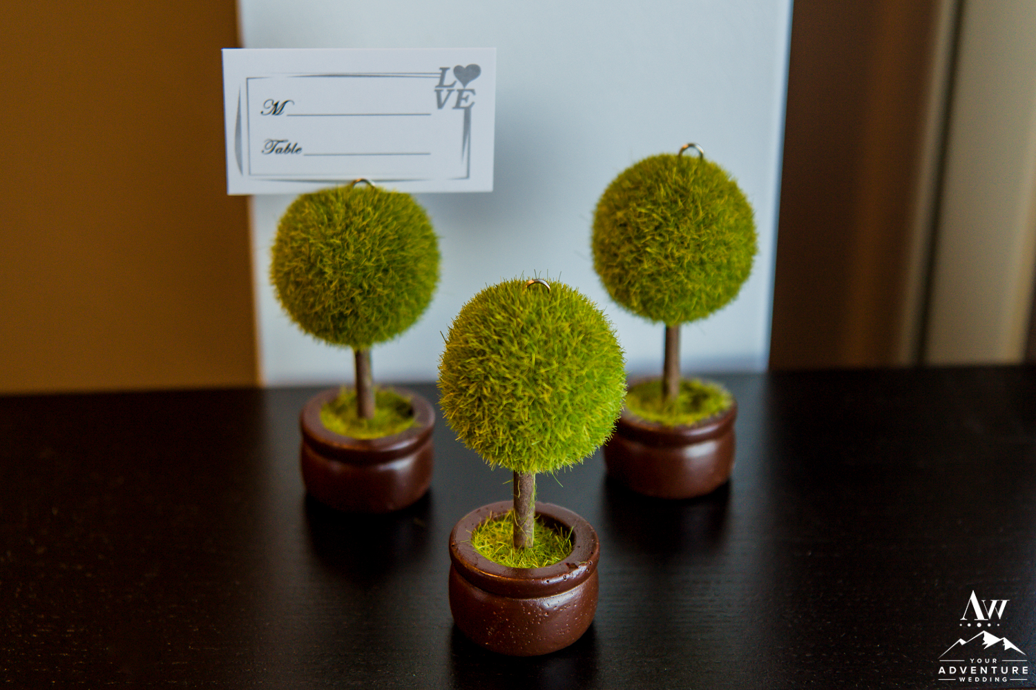 iceland-wedding-rental-moss-ball-place-card-holders