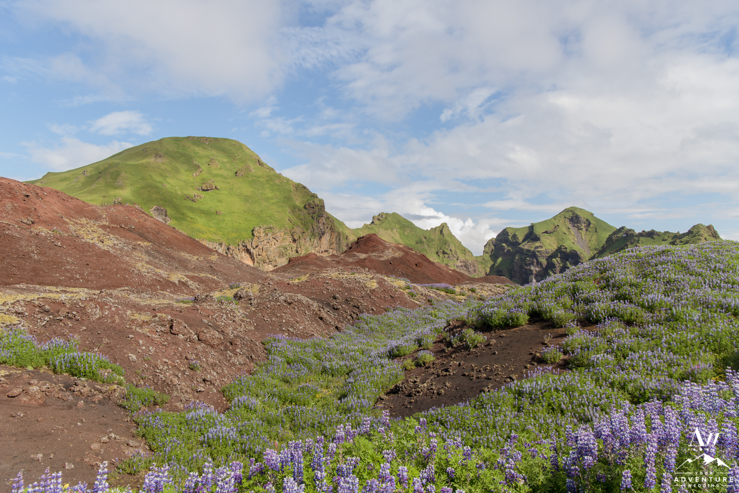 Westman Islands Iceland Wedding Locations-36